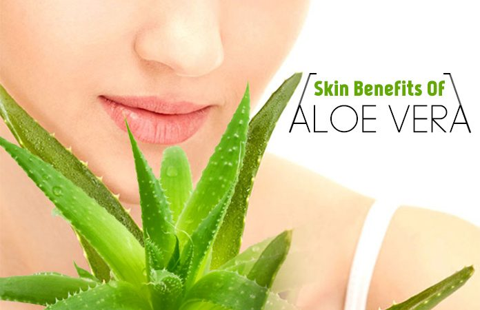 Best Benefits Of Aloe Vera For Skin